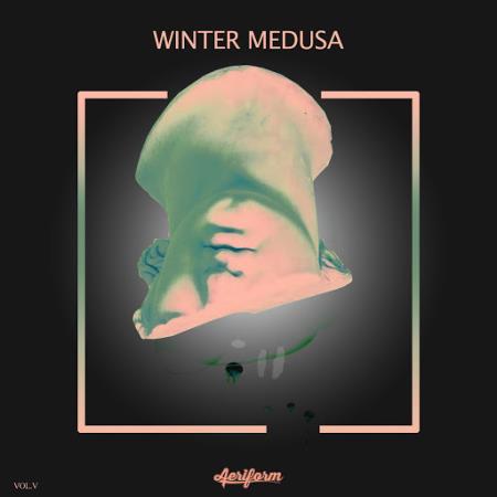 Winter Medusa , Vol. 5 (2019)