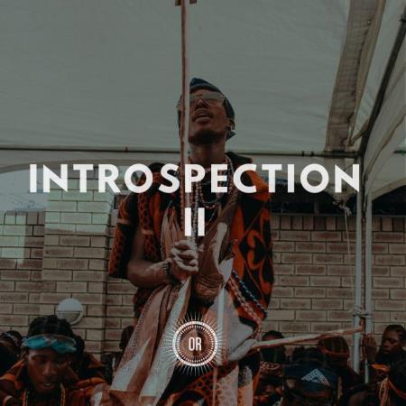 Introspection Part II (2019)