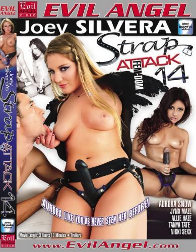 Strap Attack 14 (SD/2.82 GB)