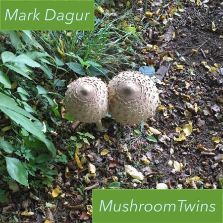 Mark Dagur - Mushroom Twins (2019)