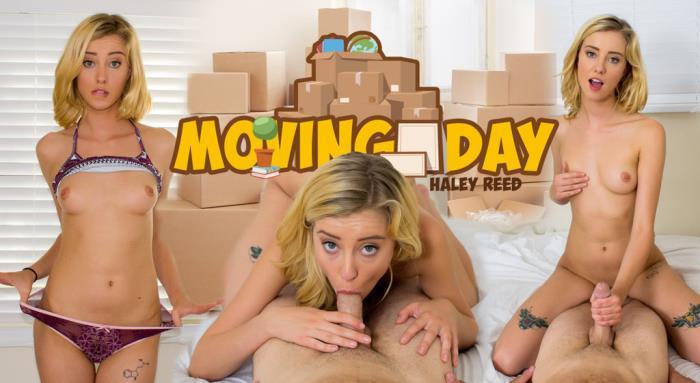 WankzVR.com - Haley Reed - Moving Day [2019 FullHD] (POV, Blowjob, Deep Throat, Feet Cumshot, Footjob, Girlfriend Experience, All sex, Virtual Reality, VR, 3D)