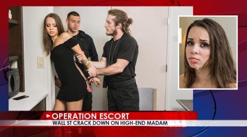 Liza Rowe - Wall St Crack Down On High-End Madam (2019/OperationEscort.com/FullHD)